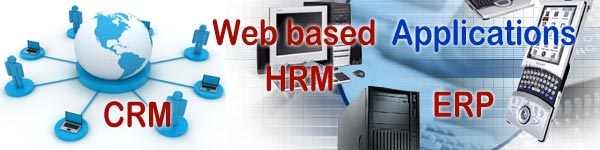 Web Based Application, CRM, HRM, ERP