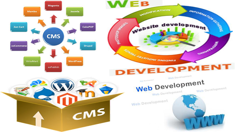 Web developmetn services in delhi