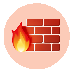 Firewall Network