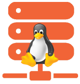 Bronze Linux Hosting
