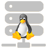 Silver Linux Hosting